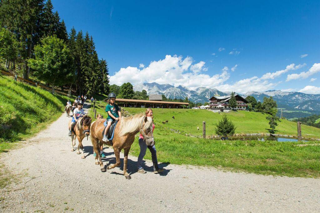 Gemütlicher Ausritt für Pferdefreunde